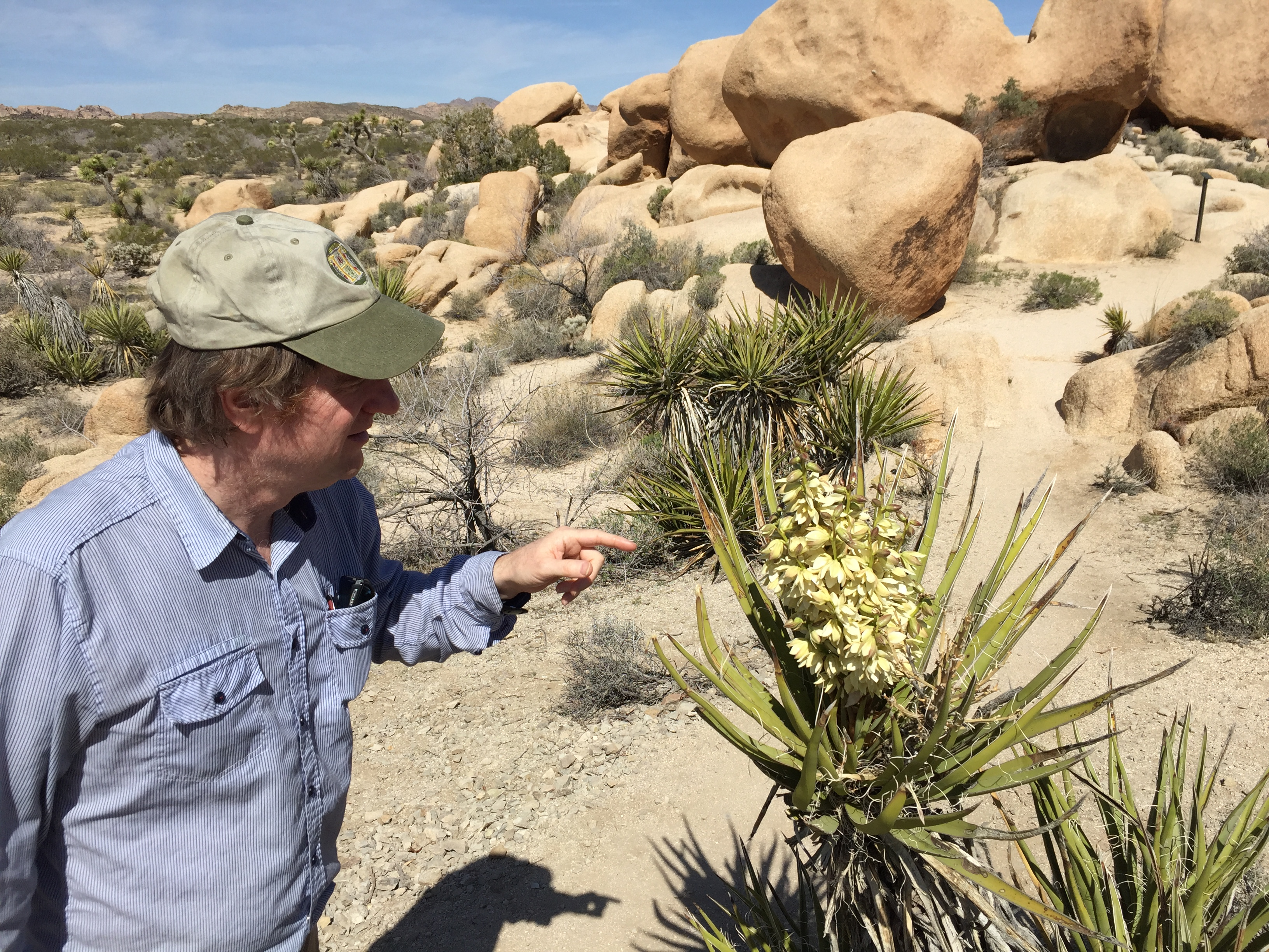 The BF making friends with the Blooming Yucca