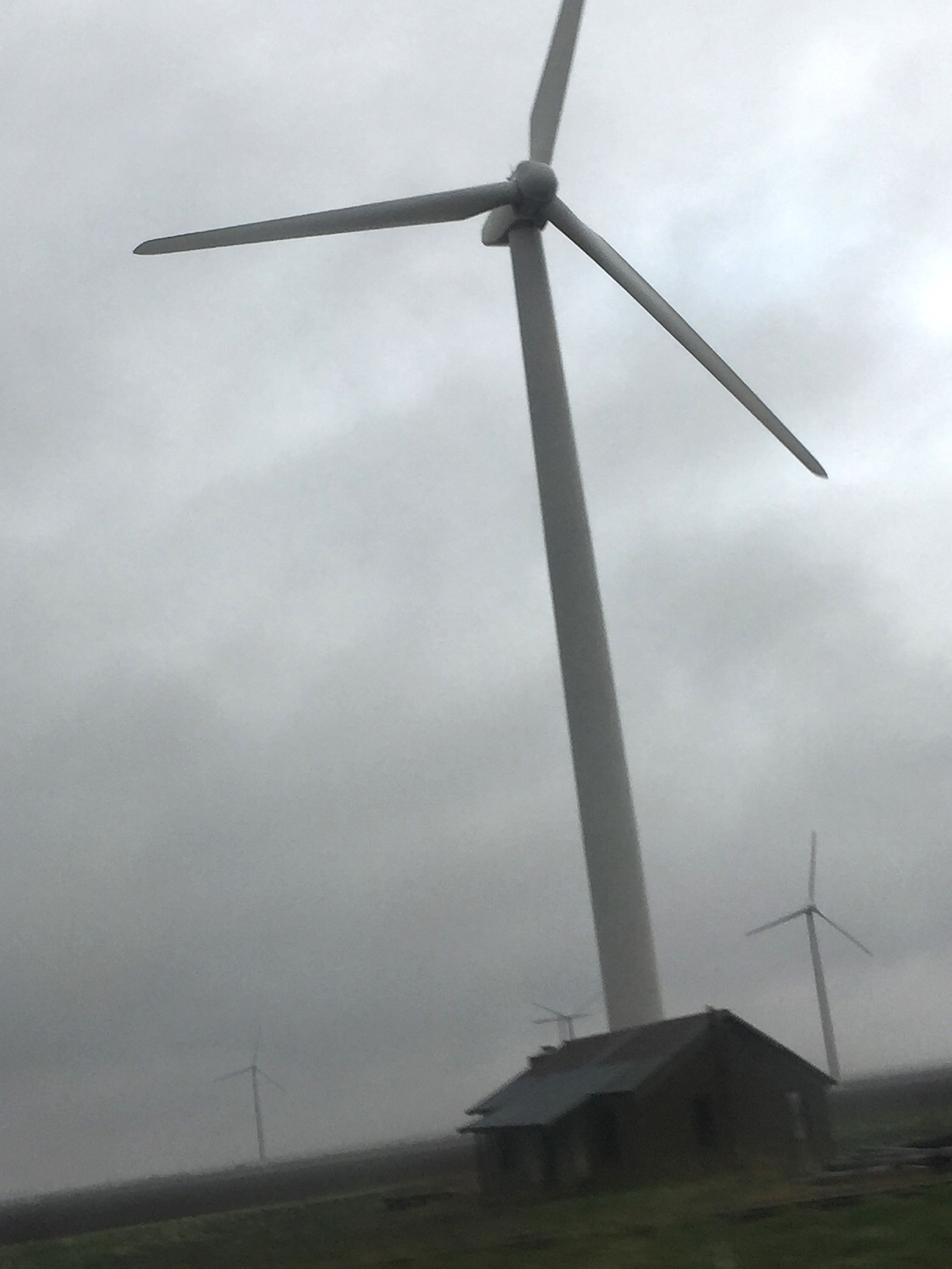 Windmill looming over shack